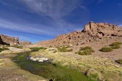 Красивый вид потока между горами вполне сочного vege Стоковое Изображение RF
