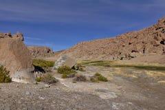 Красивый вид потока между горами вполне сочного vege Стоковая Фотография RF