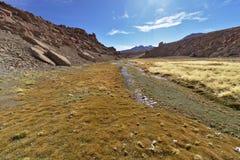 Красивый вид потока между горами вполне сочного vege Стоковые Изображения