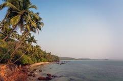 Красивый вид пляжа около океана и пальм в goa, Индии Стоковые Изображения