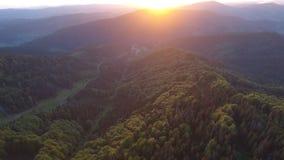 Красивый вид с воздуха леса в горах на заходе солнца сток-видео