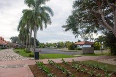 Красивый вид территории с пальмами, пути гостиницы красных щеток Стоковые Фото