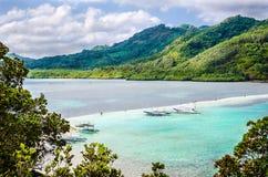 Красивый вид тропической змейки острова philippines Стоковые Изображения