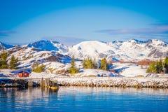 Красивый внешний взгляд деревянных зданий на утесе в взморье во время шикарного голубого неба в островах Lofoten Стоковое Изображение RF