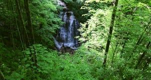 Красивый водопад в большом национальном парке закоптелых гор видеоматериал