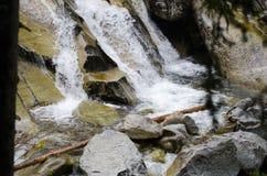 Красивый водопад в горах - Европа, высокое Tatras стоковое изображение rf