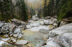 Красивый водопад в горах - Европа, высокое Tatras стоковое фото rf