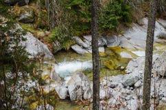 Красивый водопад в горах - Европа, высокое Tatras стоковые изображения
