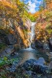 Красивый водопад в осени в национальном парке стоковые фотографии rf