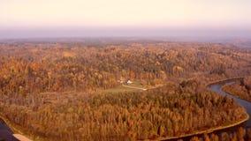 Красивый воздушный взгляд утра золотой осени в Sigulda, Латвии акции видеоматериалы