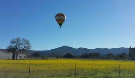 Красивый воздушный шар Napa Valley горячий Стоковая Фотография RF