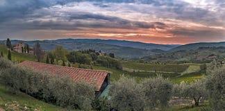 Красивый восход солнца с некоторым туманом между холмами с виноградниками Стоковые Фотографии RF