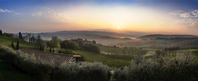 Красивый восход солнца с некоторым туманом между холмами с виноградниками Стоковая Фотография