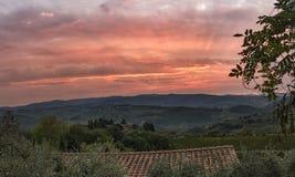 Красивый восход солнца с некоторым туманом между холмами с виноградниками Стоковые Фото
