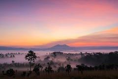 Красивый восход солнца зеленых холмов накаляя теплый, драматическое silhou блеска Стоковая Фотография RF