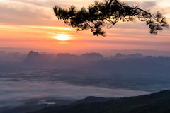 Красивый восход солнца с красочным небом в долине горы на национальном парке Phukradung, Таиланде стоковые фотографии rf