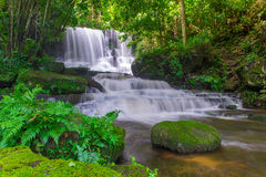 красивый водопад в тропическом лесе на phet горы berk ушата phu Стоковое Изображение
