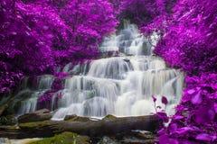 красивый водопад в тропическом лесе на phet горы berk ушата phu стоковые изображения rf