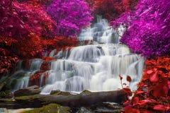 красивый водопад в тропическом лесе на phet горы berk ушата phu стоковое изображение rf