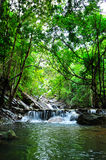 Красивый водопад на острове Phaghan Стоковые Изображения RF