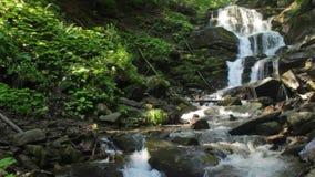 Красивый водопад приходит из огромного утеса в лесе сток-видео