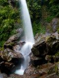 Красивый водопад 7 сестер в Индии стоковые фото