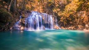 Красивый водопад с апельсином выходит лес стоковое изображение