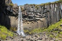 Красивый водопад Svartifoss в национальном парке Skaftafell, Исландии Стоковые Изображения RF