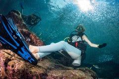 Красивый водолаз в предпосылке рыб и кораллового рифа стоковые фотографии rf