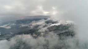 Красивый день горы, муха над пасмурной землей зимы сток-видео