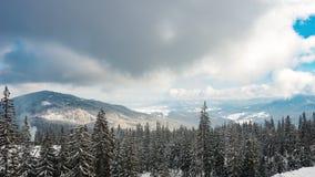 Красивый день горы, пасмурная ель зимы акции видеоматериалы