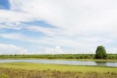 Красивый день на запруде Lifupa, Kasungu Стоковое Изображение RF