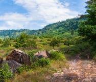 Красивый естественный взгляд на Khlong Yai, Таиланде Стоковые Фотографии RF