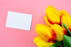 Красивый желтых цветка и карточки тюльпана, примечания и бирки с плоским положением на розовой предпосылке Стоковые Изображения RF