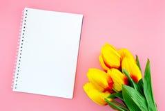Красивый желтых цветка тюльпана и бумаги, примечания с плоским положением на розовой предпосылке Стоковое Изображение RF