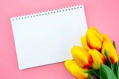Красивый желтых цветка тюльпана и бумаги, примечания с плоским положением на розовой предпосылке Стоковая Фотография RF