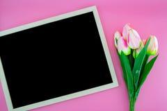 Красивый желтых цветка тюльпана и доски, классн классного с плоским положением на розовой предпосылке Стоковые Изображения RF
