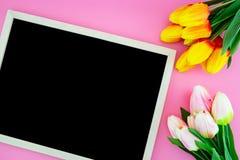 Красивый желтых цветка тюльпана и доски, классн классного с плоским положением на розовой предпосылке Стоковое фото RF