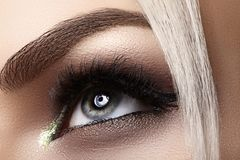 Красивый женский глаз с весьма длинными ресницами, черный состав вкладыша Совершенный состав, длинные плетки Глаза моды крупного  стоковая фотография