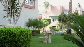 Красивый загородный дом с пальмами акции видеоматериалы