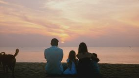Красивый задний взгляд снятый счастливой семьи сидит совместно наблюдая изумительный заход солнца на эпичном пляже моря, 2 собака сток-видео