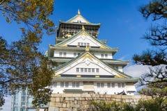 Красивый замок Осака архитектуры с деревом Стоковое Фото