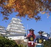 Красивый замок Himeji druing сезон падения с славным цветом стоковые фотографии rf