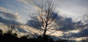 Красивый заход солнца стоковые фотографии rf