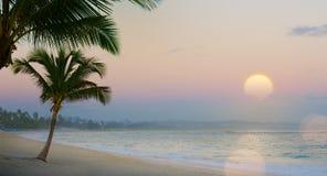 Красивый заход солнца над тропическим пляжем стоковое фото