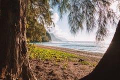 Красивый заход солнца на пляже острова рая Стоковое фото RF
