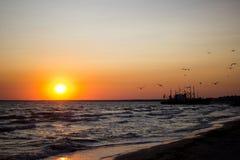 Красивый заход солнца на стаде морского побережья a птиц летая над морем в заходящем солнце коробка на горизонте Стоковое фото RF