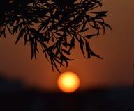 Красивый заход солнца в вечере Стоковое Изображение RF