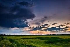 Красивый заход солнца в поле, ландшафте лета, ярком красочном небе и облаках как предпосылка, зеленая пшеница Стоковая Фотография