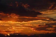 Красивый заход солнца в поле Стоковые Изображения RF